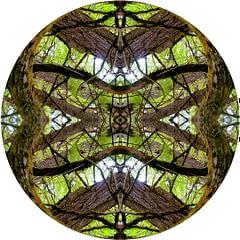 Mandala Natura No 11