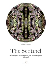 Sentinel Poster No. 1