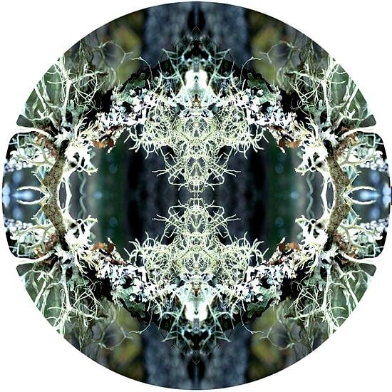 Mandala Natura 12